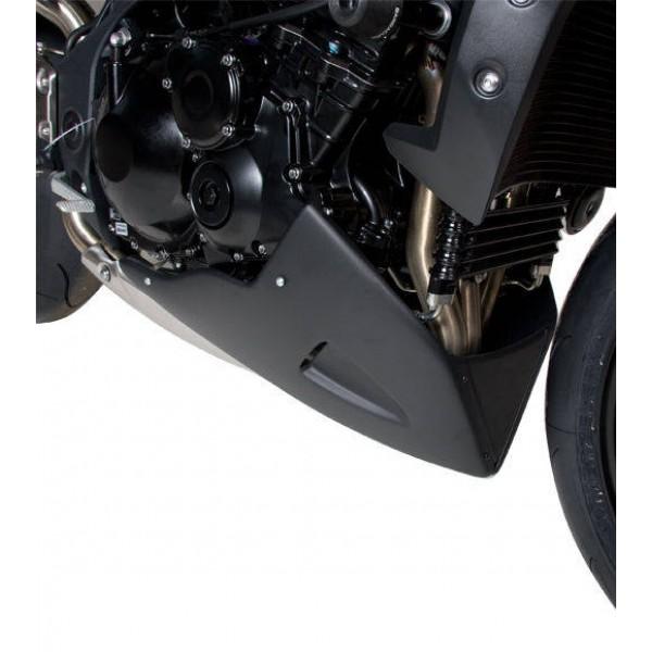Motorspoiler Triumph Speed Triple