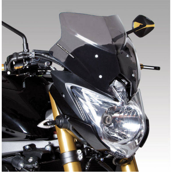 Windschild Yamaha FZ8